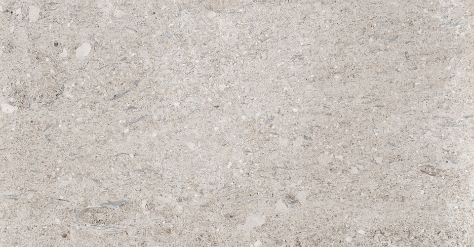 Portland limestone perryfield shelly whitbed